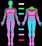 Диагностика всео организма